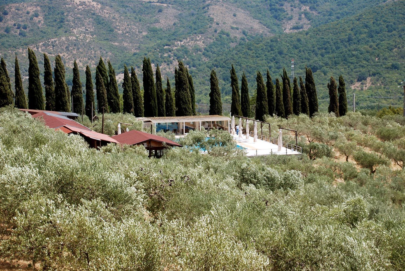 vista vallata e piscina